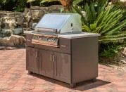 PGS-Grill-2